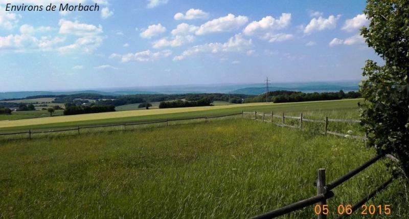 CR de juin 2015 en Moselle allemande (1) Dscn0935