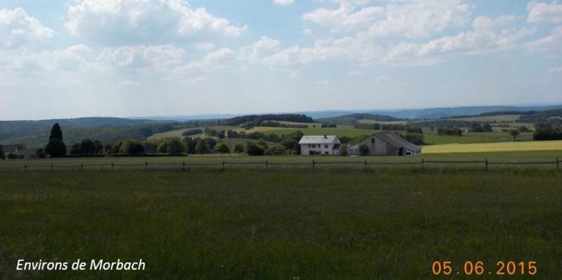 CR de juin 2015 en Moselle allemande (1) Dscn0936
