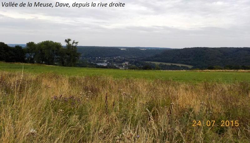 CR du 24/7/15, en explorant la berge gauche de la Meuse entre Dinant et Namur Dscn1130