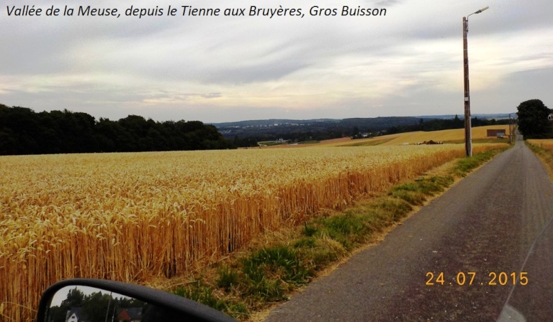 CR du 24/7/15, en explorant la berge gauche de la Meuse entre Dinant et Namur Dscn1133