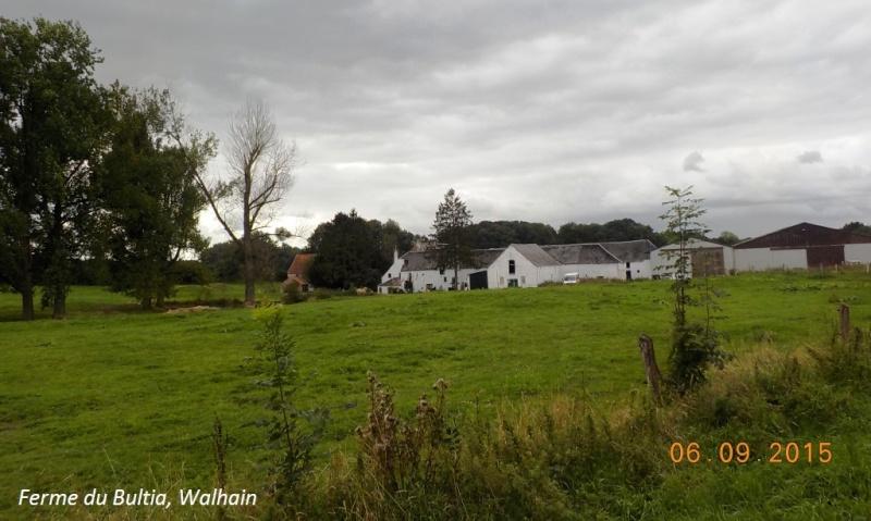 CR du 6/9/15: 132 km dans le triangle Charleroi-Binche-Thuin Dscn1730