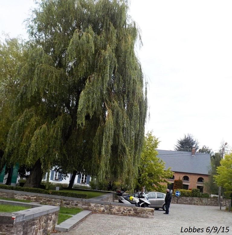 CR du 6/9/15: 132 km dans le triangle Charleroi-Binche-Thuin Dscn1774