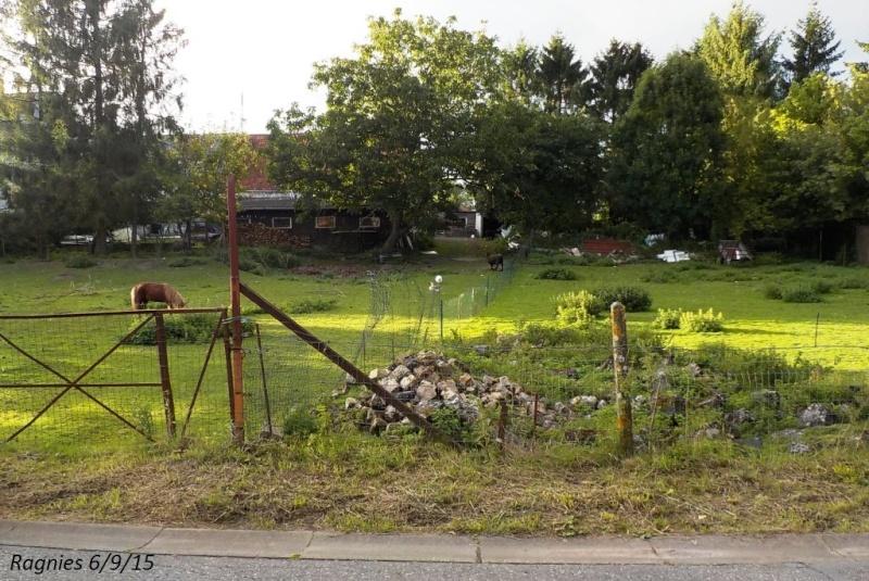 CR du 6/9/15: 132 km dans le triangle Charleroi-Binche-Thuin Dscn1795