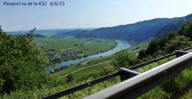 CR de juin 2015 en Moselle allemande (1) P1040614