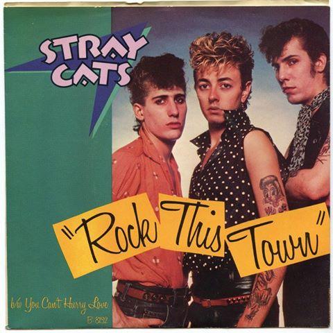 STRAY CATS 10624910