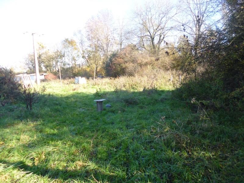 Quelques photos du 1 novembre P1010822