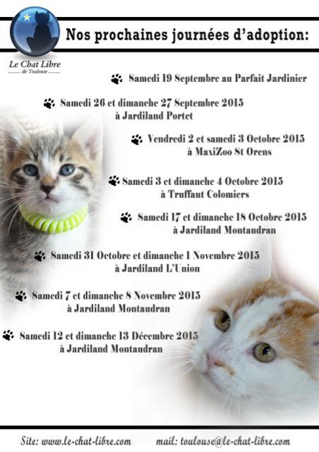 Le planning 2015 des journées adoption Affich10