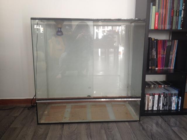 Vend terrarium verre 80x40x80 Terra_10