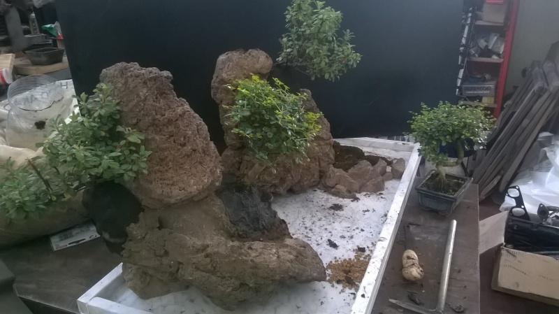 Penjing- landscape ...........work in progress Wp_20113