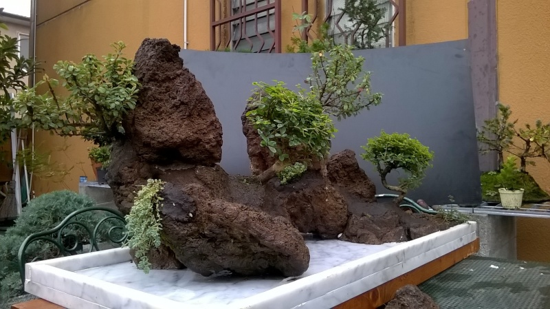 Penjing- landscape ...........work in progress Wp_20117
