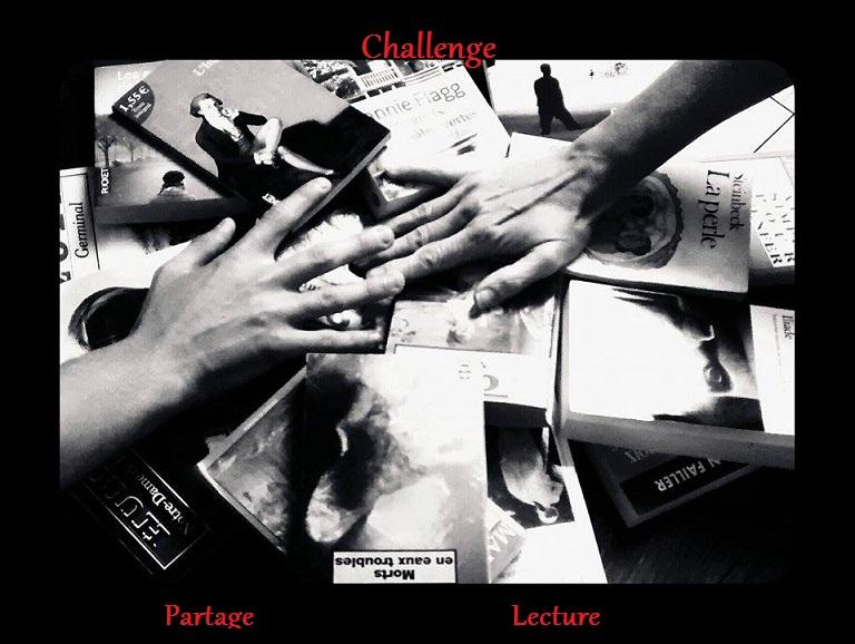 Choix du logo pour le challenge Partage Lecture Concou11