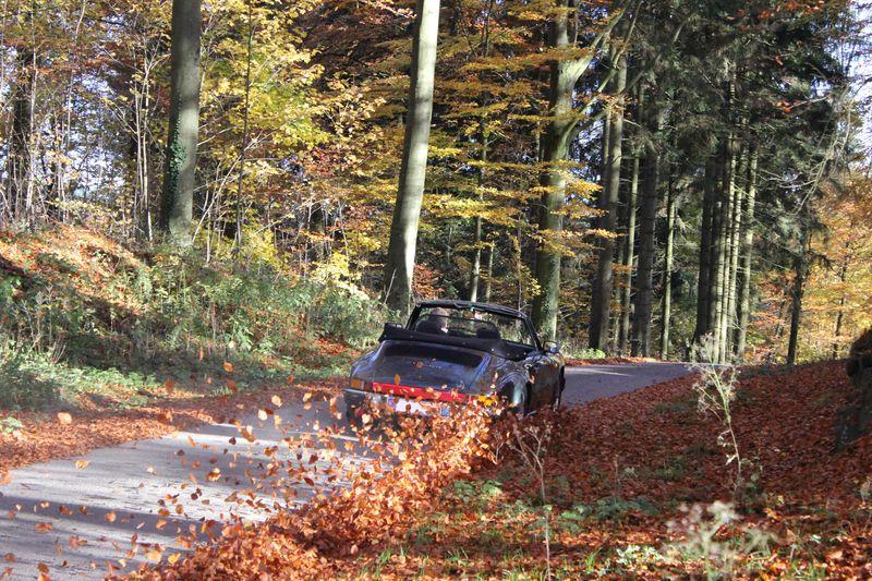 Porsche en automne - Page 2 Plaque12