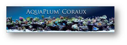 Bourse Aquariophile de Bordeaux 2015 Aquapl10
