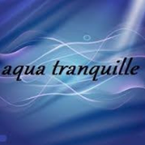 Bourse Aquariophile de Bordeaux 2015 Aquatr10