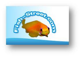 4 ieme bourse aquariophile bordelaise 20 Septembre 2015 Fishst10