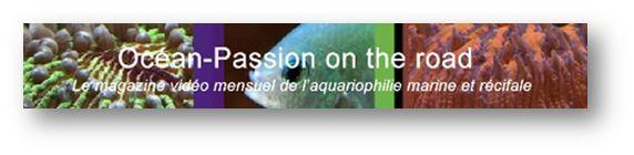 Bourse Aquariophile de Bordeaux 2015 Optr10