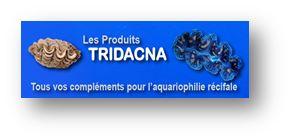 Bourse Aquariophile de Bordeaux 2015 Tridac10