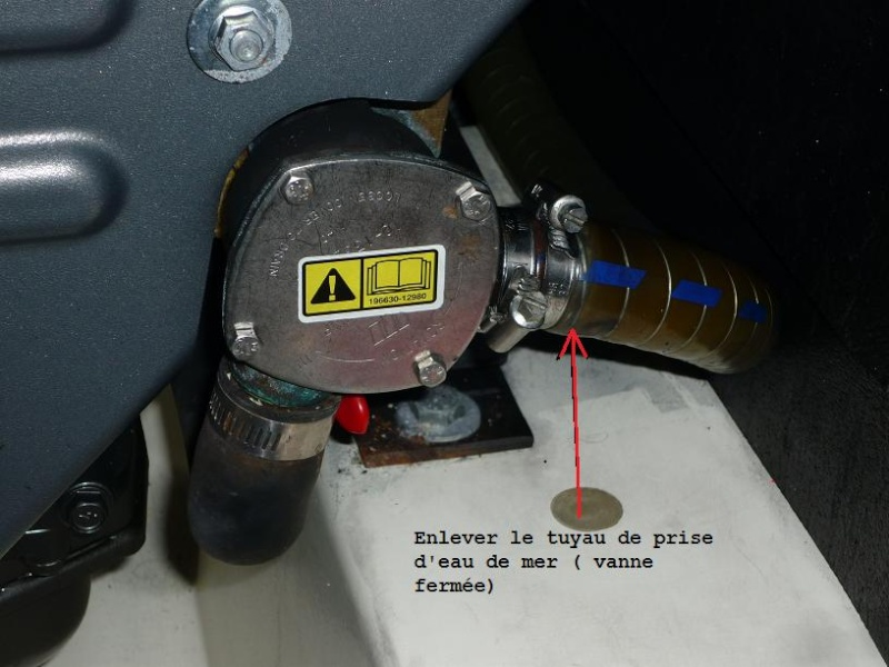 Hivernage P1030210