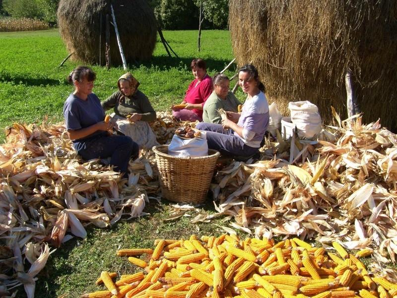 Agrar & selo u sjeni prošlosti 12052410