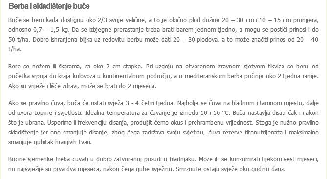 Buča-bundeva-tikva Screen13