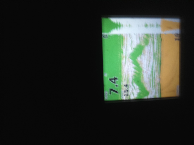 Début de nuit agité  Dsc_1216