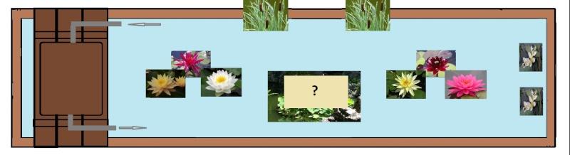 bassin de jardin 8000L - Page 6 Maj_ba10