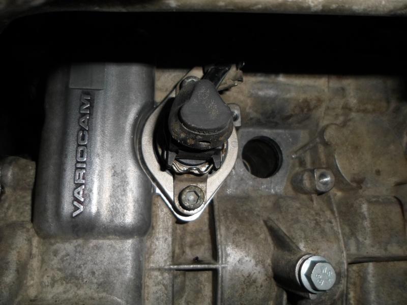 arbre - Remontage arbre à cames sur moteur M 96.23 Sam_0133