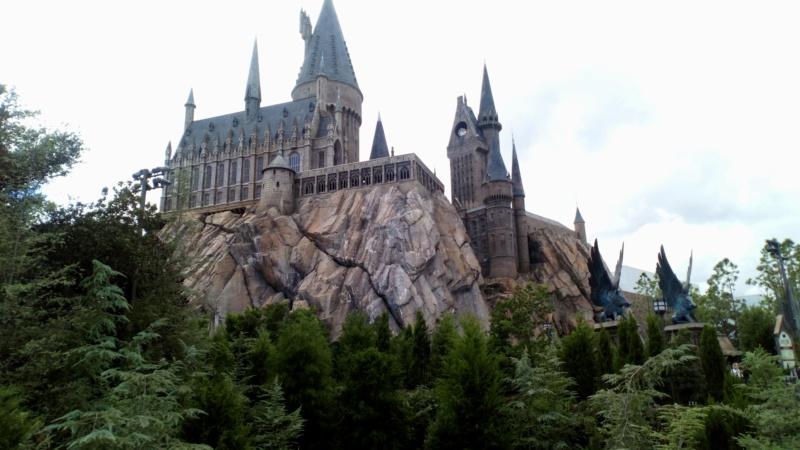 [Halloween 2018] Universal Studios, Disney Cruise Line dans les caraïbes et Gatorland - Page 3 Dsc_0623