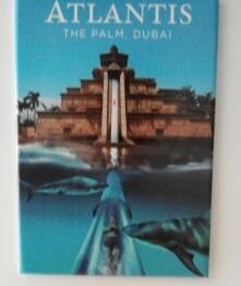 [TR Avril-mai 2018] Un voyage fou à Dubaï : des parcs, de la nourriture, du désert et un hôtel de luxe ! - Page 4 Magnet10