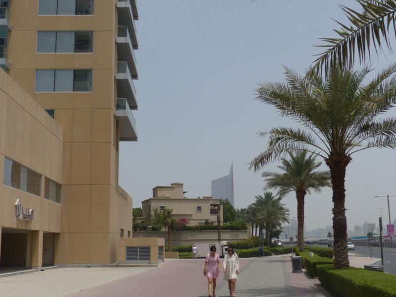 [TR Avril-mai 2018] Un voyage fou à Dubaï : des parcs, de la nourriture, du désert et un hôtel de luxe ! - Page 3 P1050829