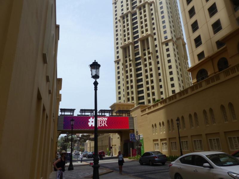 [TR Avril-mai 2018] Un voyage fou à Dubaï : des parcs, de la nourriture, du désert et un hôtel de luxe ! - Page 3 P1050846