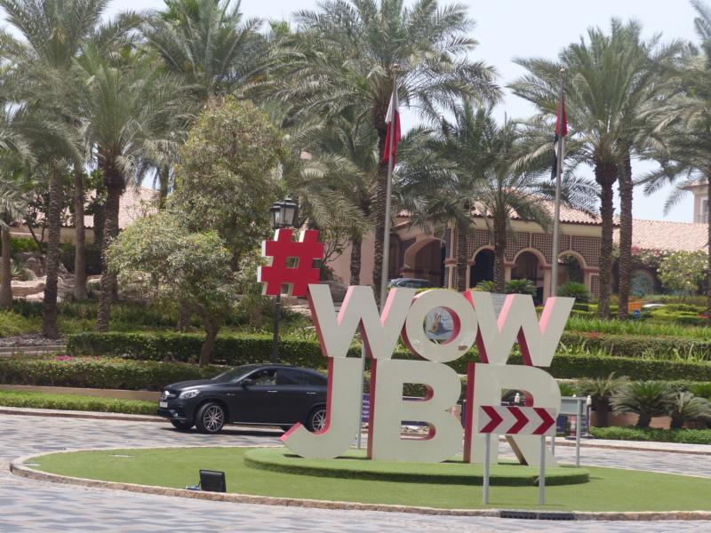[TR Avril-mai 2018] Un voyage fou à Dubaï : des parcs, de la nourriture, du désert et un hôtel de luxe ! - Page 3 P1050849