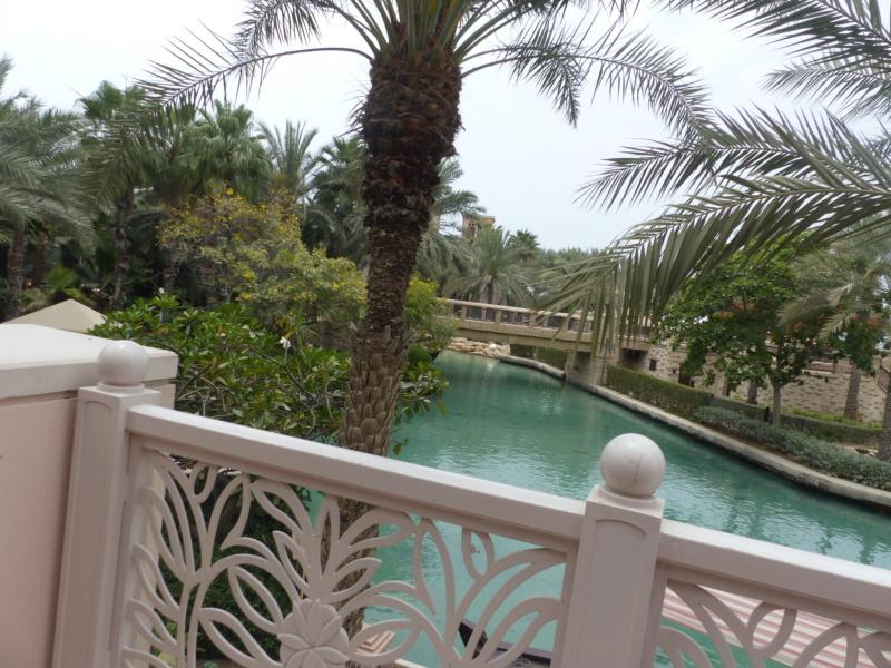 [TR Avril-mai 2018] Un voyage fou à Dubaï : des parcs, de la nourriture, du désert et un hôtel de luxe ! - Page 4 P1060765