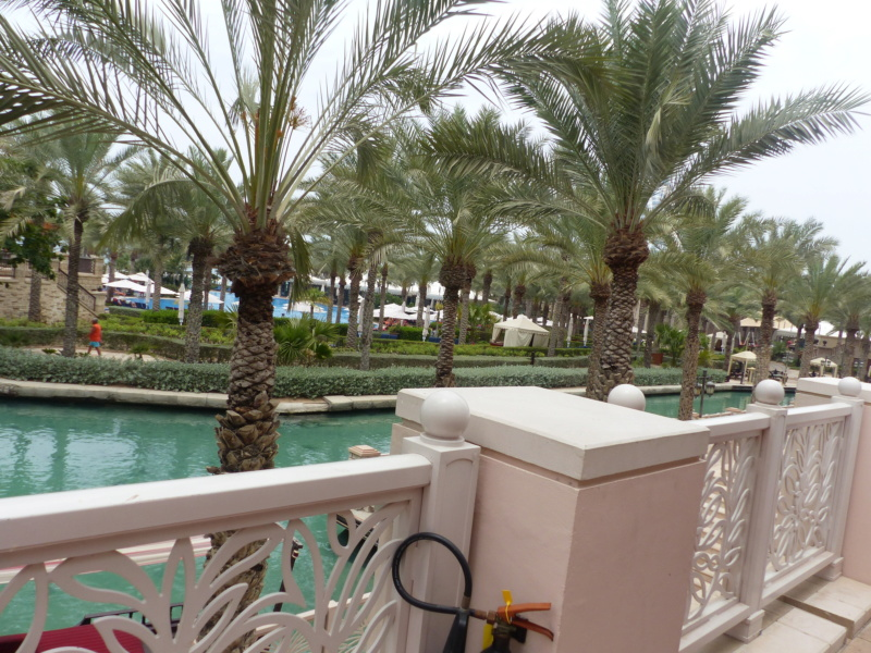 [TR Avril-mai 2018] Un voyage fou à Dubaï : des parcs, de la nourriture, du désert et un hôtel de luxe ! - Page 4 P1060766