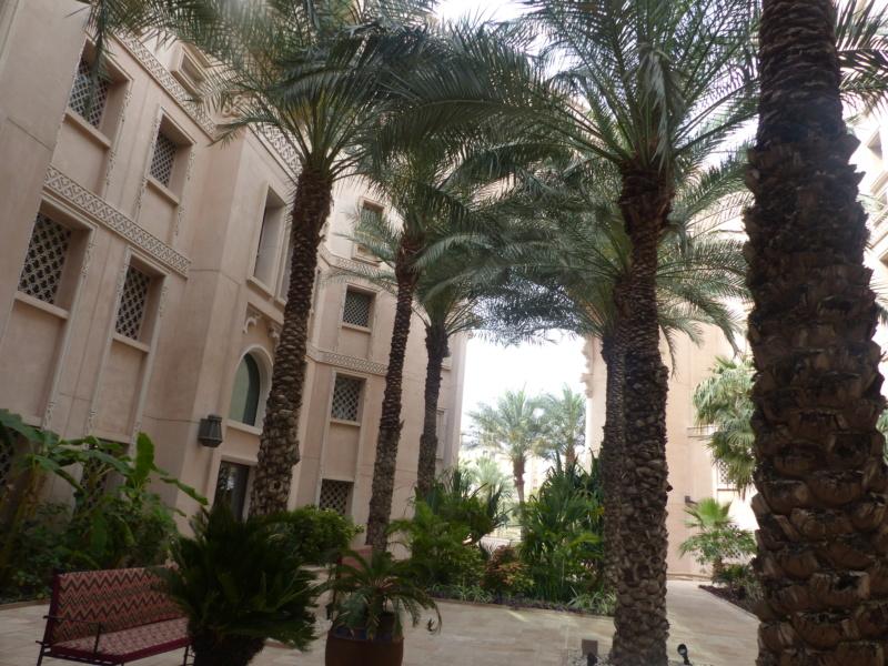 [TR Avril-mai 2018] Un voyage fou à Dubaï : des parcs, de la nourriture, du désert et un hôtel de luxe ! - Page 4 P1060910