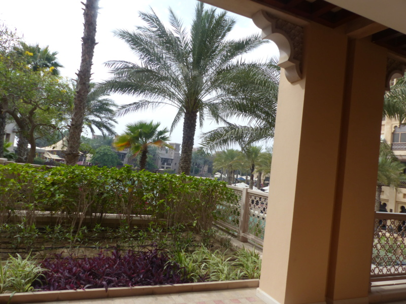 [TR Avril-mai 2018] Un voyage fou à Dubaï : des parcs, de la nourriture, du désert et un hôtel de luxe ! - Page 4 P1060912