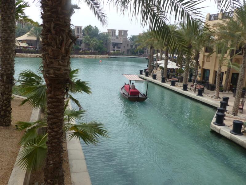 [TR Avril-mai 2018] Un voyage fou à Dubaï : des parcs, de la nourriture, du désert et un hôtel de luxe ! - Page 4 P1060917