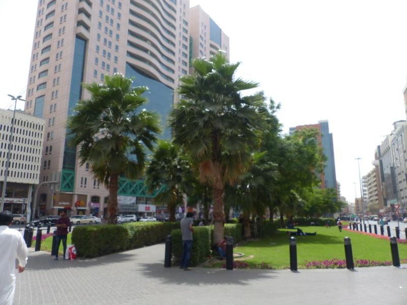 [TR Avril-mai 2018] Un voyage fou à Dubaï : des parcs, de la nourriture, du désert et un hôtel de luxe ! - Page 4 P1060937