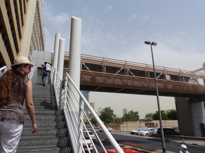 [TR Avril-mai 2018] Un voyage fou à Dubaï : des parcs, de la nourriture, du désert et un hôtel de luxe ! - Page 4 P1060939