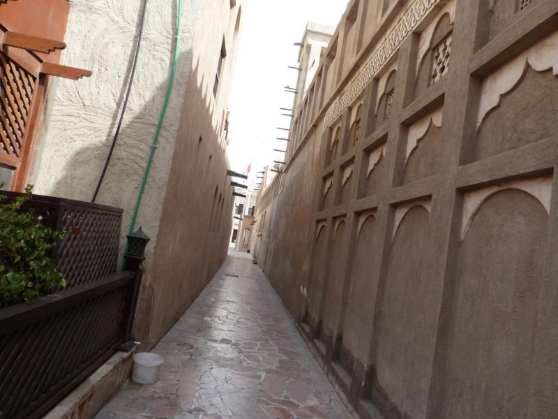 [TR Avril-mai 2018] Un voyage fou à Dubaï : des parcs, de la nourriture, du désert et un hôtel de luxe ! - Page 4 P1060966