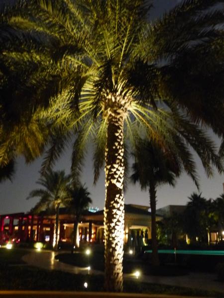 [TR Avril-mai 2018] Un voyage fou à Dubaï : des parcs, de la nourriture, du désert et un hôtel de luxe ! - Page 4 P1070023