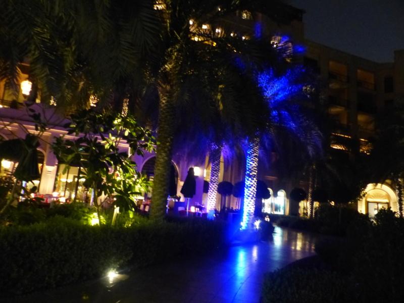 [TR Avril-mai 2018] Un voyage fou à Dubaï : des parcs, de la nourriture, du désert et un hôtel de luxe ! - Page 4 P1070025