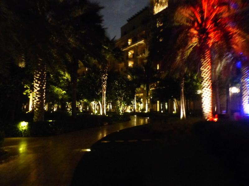 [TR Avril-mai 2018] Un voyage fou à Dubaï : des parcs, de la nourriture, du désert et un hôtel de luxe ! - Page 4 P1070026