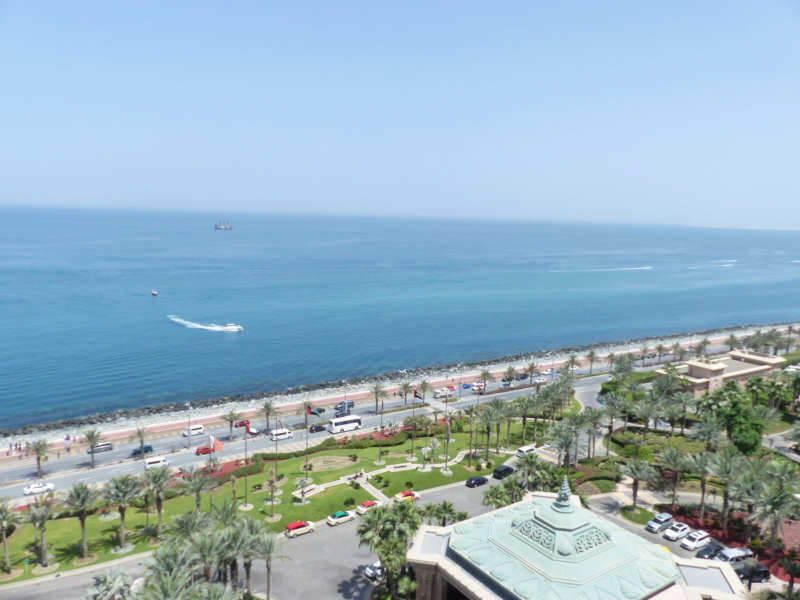 [TR Avril-mai 2018] Un voyage fou à Dubaï : des parcs, de la nourriture, du désert et un hôtel de luxe ! - Page 4 P1070141