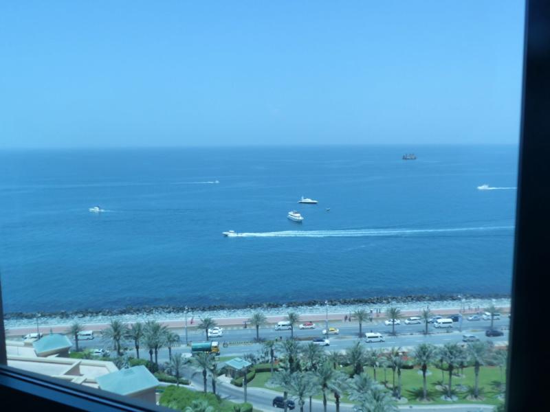 [TR Avril-mai 2018] Un voyage fou à Dubaï : des parcs, de la nourriture, du désert et un hôtel de luxe ! - Page 4 P1070156