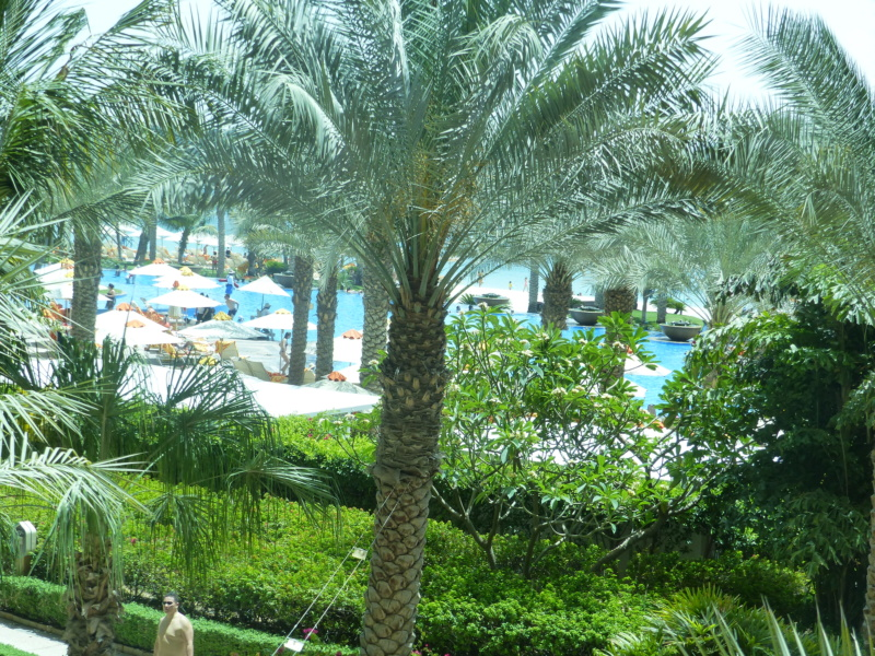 [TR Avril-mai 2018] Un voyage fou à Dubaï : des parcs, de la nourriture, du désert et un hôtel de luxe ! - Page 4 P1070166