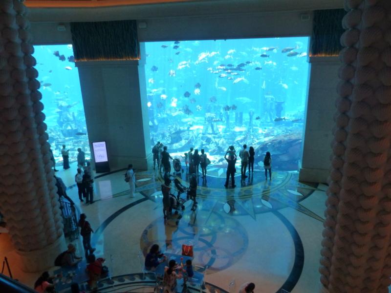 [TR Avril-mai 2018] Un voyage fou à Dubaï : des parcs, de la nourriture, du désert et un hôtel de luxe ! - Page 4 P1070180