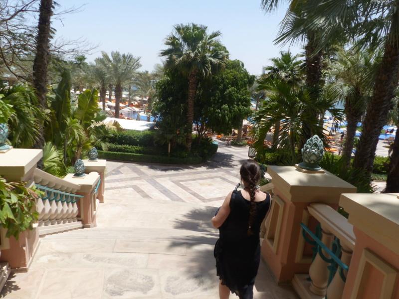 [TR Avril-mai 2018] Un voyage fou à Dubaï : des parcs, de la nourriture, du désert et un hôtel de luxe ! - Page 4 P1070191