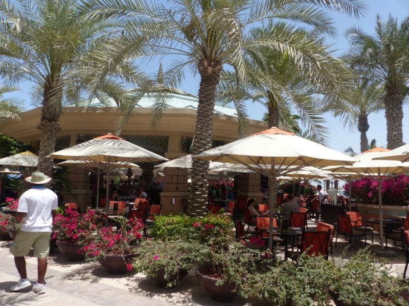 [TR Avril-mai 2018] Un voyage fou à Dubaï : des parcs, de la nourriture, du désert et un hôtel de luxe ! - Page 4 P1070221