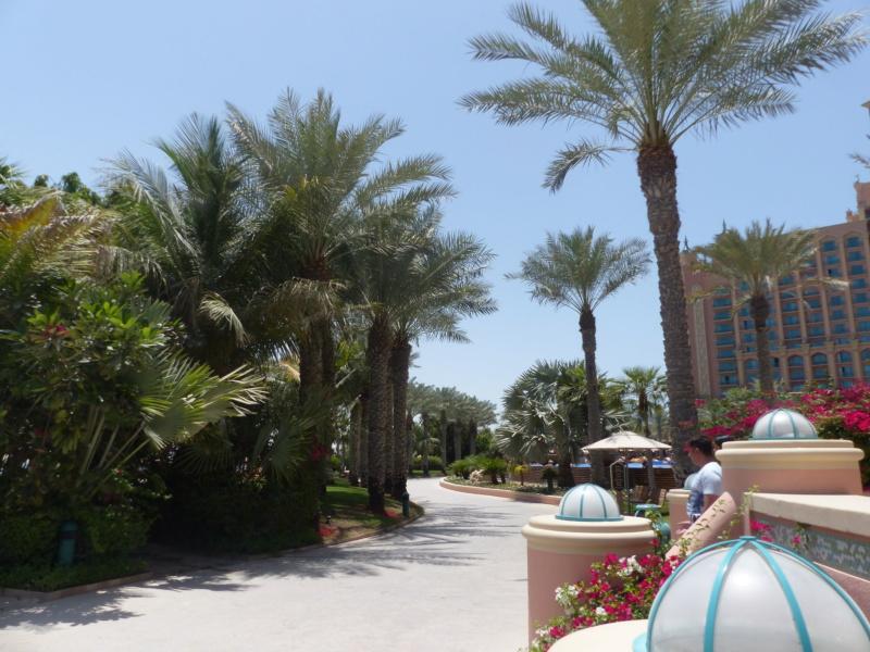 [TR Avril-mai 2018] Un voyage fou à Dubaï : des parcs, de la nourriture, du désert et un hôtel de luxe ! - Page 4 P1070223